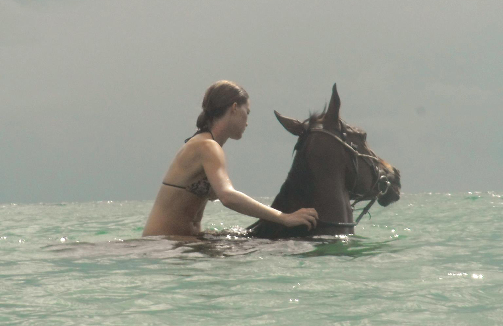 Horse Volunteer with Mozambique Horse Safari