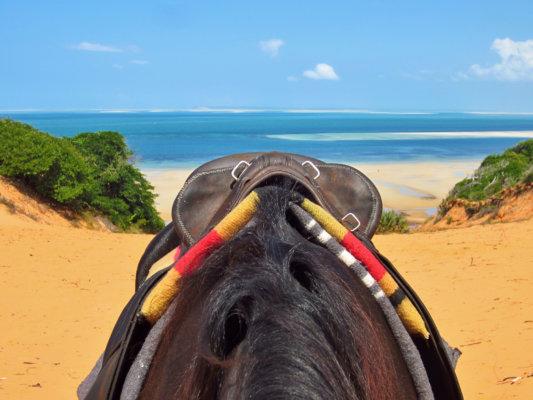 Red Dune Ride