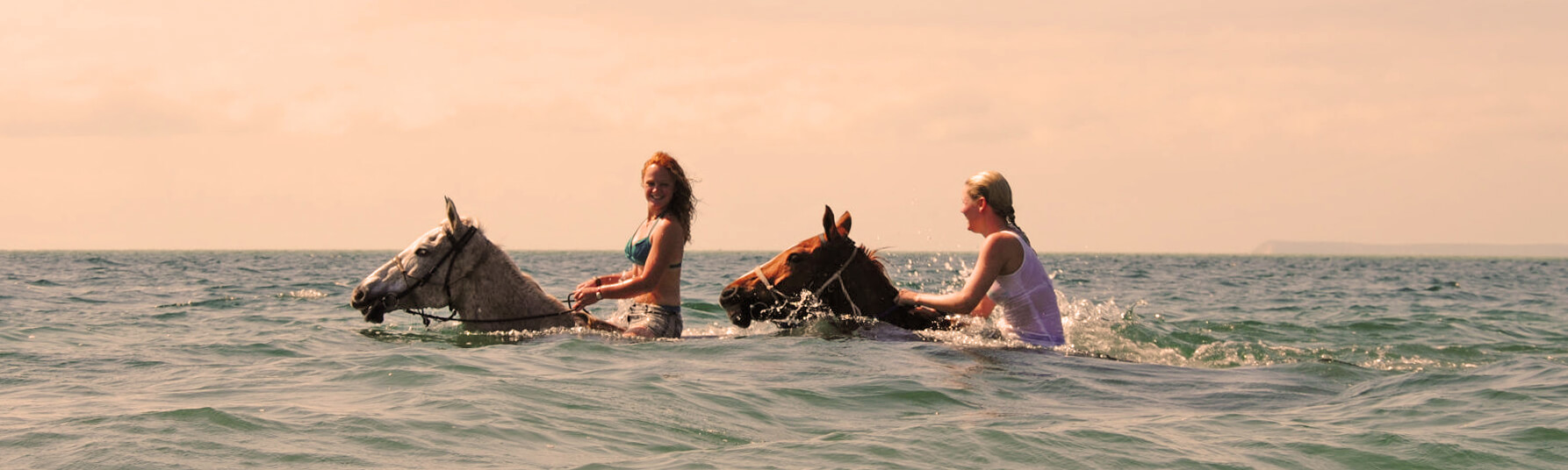 Swimming with horses at Mozambique Horse Safari