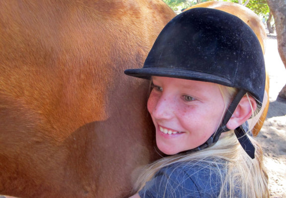 horse-volunteer-stables-3