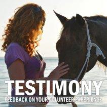 testimony-7-800x800