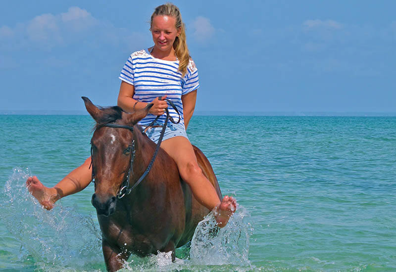 working-horse-riding-holiday-1